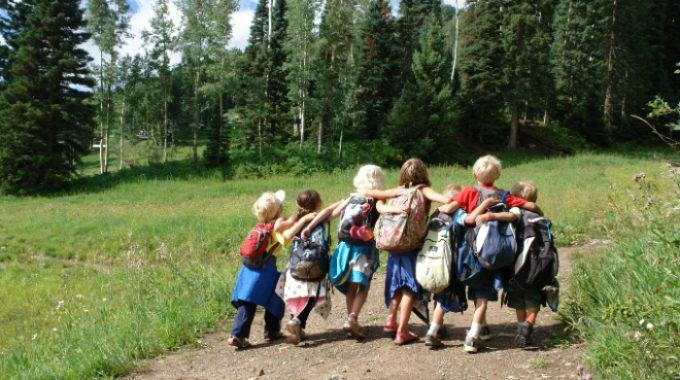 Лучшие программы по туризму выберут в области